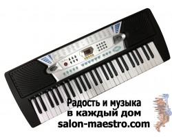 (01\0828) Синтезатор Shen Kong 2065 для начинающих пианистов