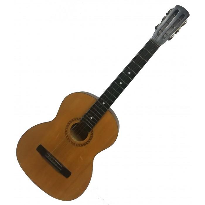 1073 Гитара