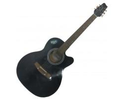 (0904) Акустическая Гитара Трембита с Глубочайшим Звуком