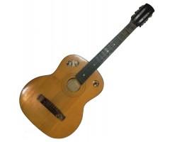 (1072) Гитара для Игры в Дружной и Веселой Компании
