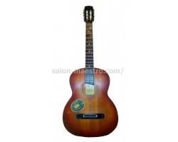 (01\0519) Черниговская Гитара для учёбы